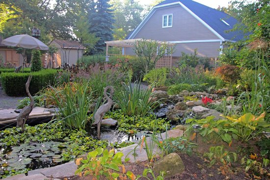 Schoolmaster's House Bed and Breakfast: Garden and small pond