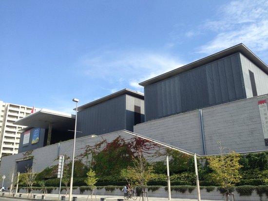 Hyogo Prefectural Museum of Art: 入り口がわかりにくいのも安藤流