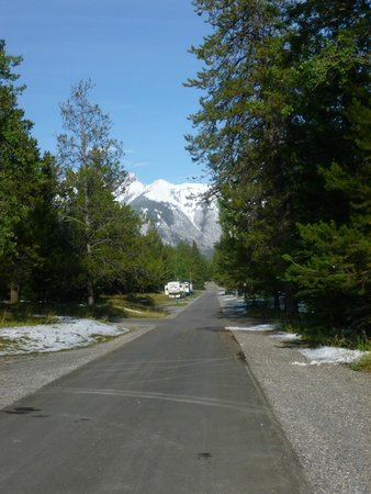 Tunnel Mountain Trailer Court Campground: View from our Pitch No 811