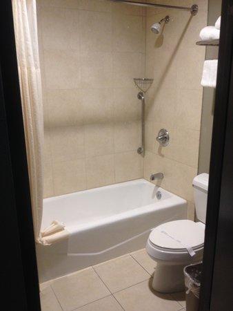 BLVD Hotel & Suites: salle de bain