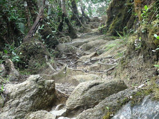 Sutera Sanctuary Lodges: On the summit trail