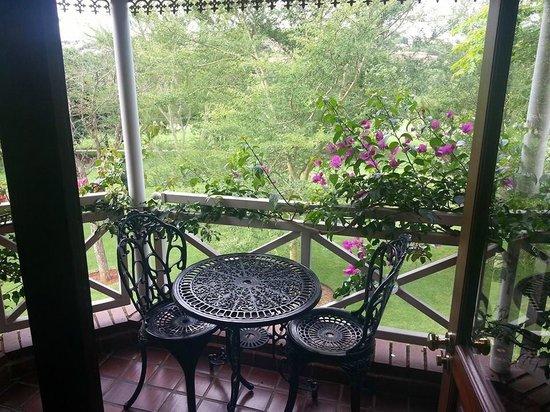 The Woodpecker Inn: Window view