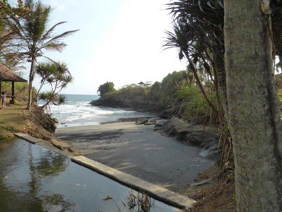 Gajah mina beach resort vue du bungalow n8