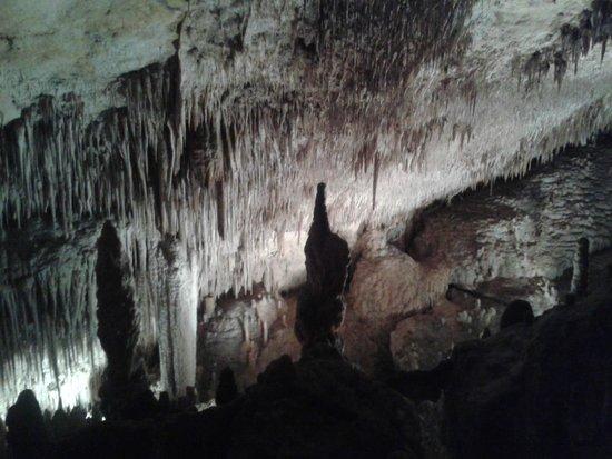 coves del drac - Picture of Caves of Drach, Porto Cristo - TripAdvisor