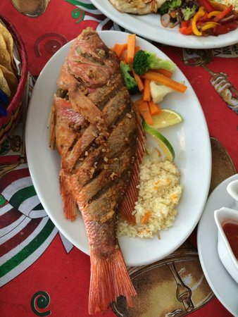 Rio Grande : Whole fried Red Snapper