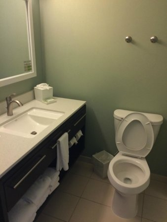 Home2 Suites by Hilton Nashville Airport: Bathroom