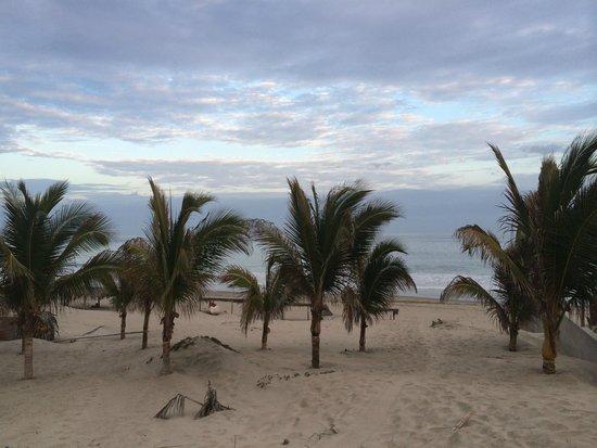 Marcilia Beach Bungalows: Playa