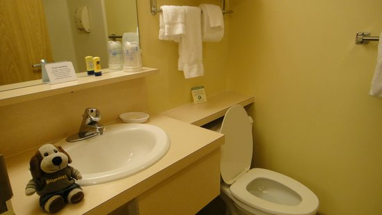 Bathroom with sink and world\'s most powerful toilet. - Picture of ...