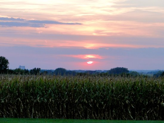 Greenwood, ME: Sunset over the corn fields.