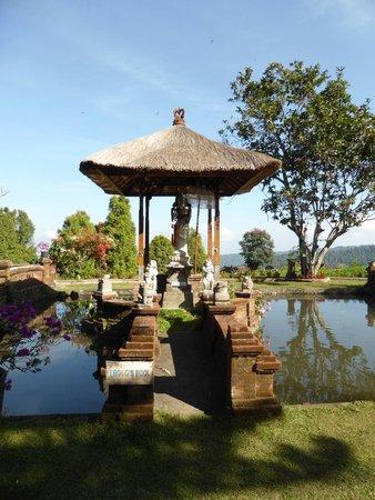 Puri Lumbung Cottages: parc et mares