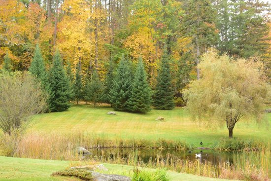 Adair Country Inn & Restaurant : Duck Pond in Autumn