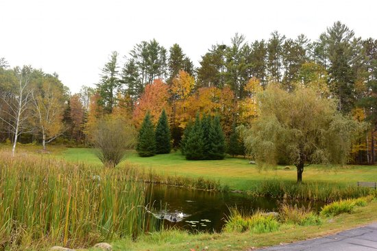 Adair Country Inn & Restaurant: Front Lawn Fall Foliage