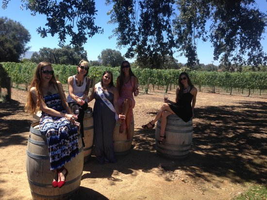 Wine Canyon Tours: Roblar Winery