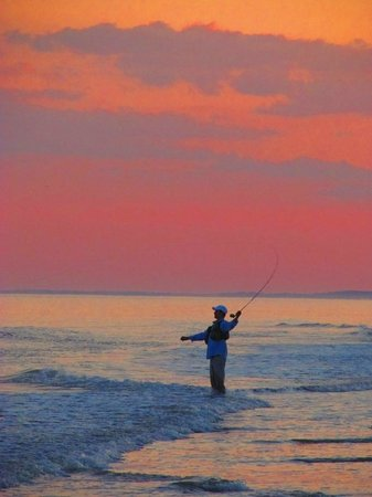 Egret Point by Spinnaker Resorts: Sunset on Coligny Beach