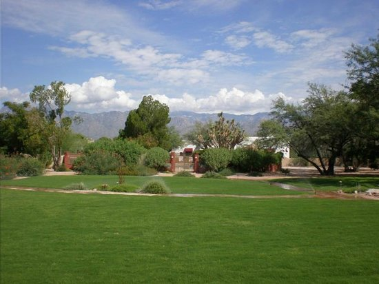 The Inns at El Rancho Merlita: View from our room