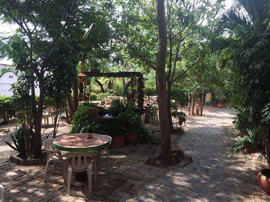 La Casa de Felipe Hostel: Fællesareal