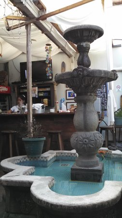 El Hostal Bed and Breakfast : the courtyard