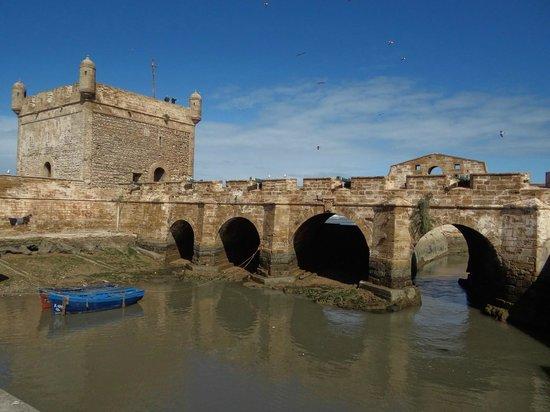 the ramparts of essaouira - photo #43