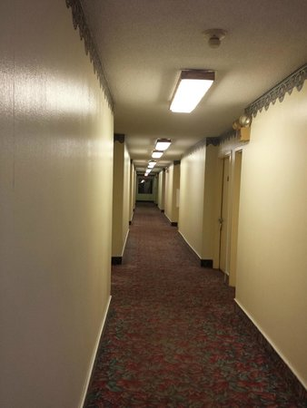 Red Roof Inn Hillsville : Hall