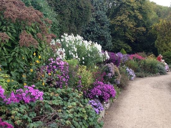 Waterperry Gardens: the 200ft border in its Autumn colours