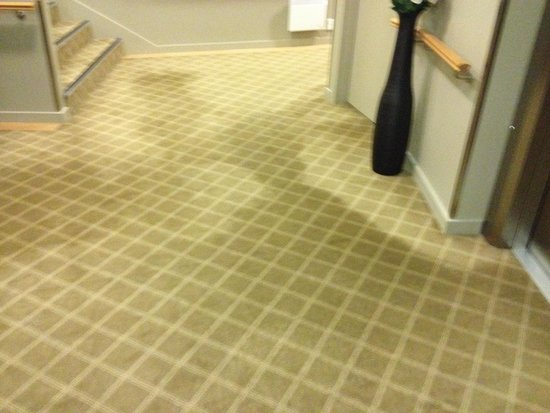 Auckland Takapuna Oaks: Stains on carpet (throughout hotel)