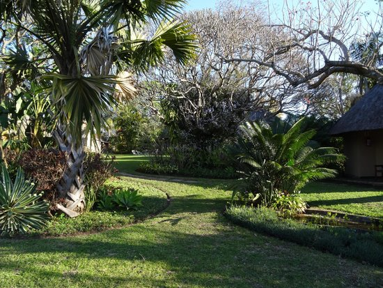 Idle & Wild: tuin