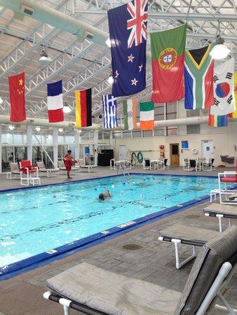 Chicago's Essex Inn : piscina