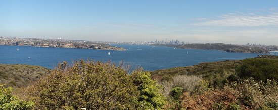Manly Bike Tours and Bike Hire : Magnificent views