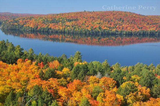 Algonquin Provincial Park, Canada: Autumn in Algonquin from the summit of Booth's Rock Trail