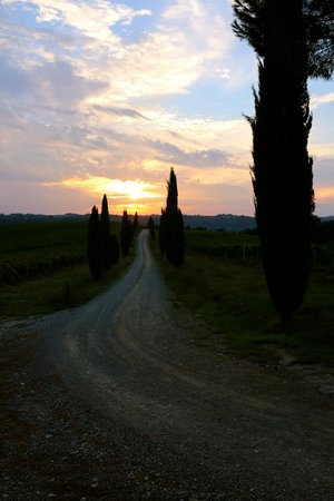 Fattoria Pratale : sunset looking from the facility
