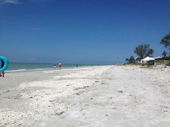 Casa Ybel Resort : The beach