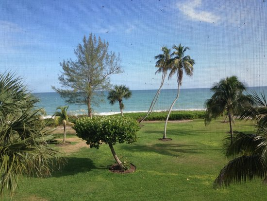 Casa Ybel Resort : View from the porch
