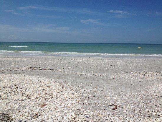 Casa Ybel Resort : The Ocean