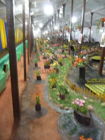 Thread Garden: The Garden Gallary