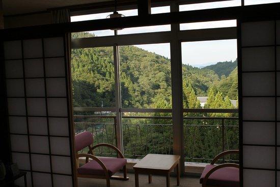 Mukaidaki Ryokan: 部屋からみる景色