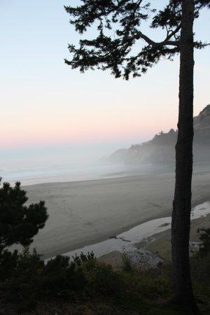 Starfish Point Condos: Morning first light