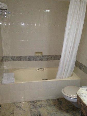 Casino Hotel : The bath tub