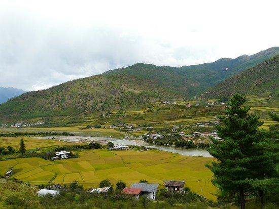 Authentic bhutan tours