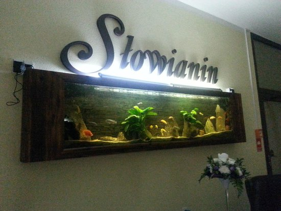 Slowianin