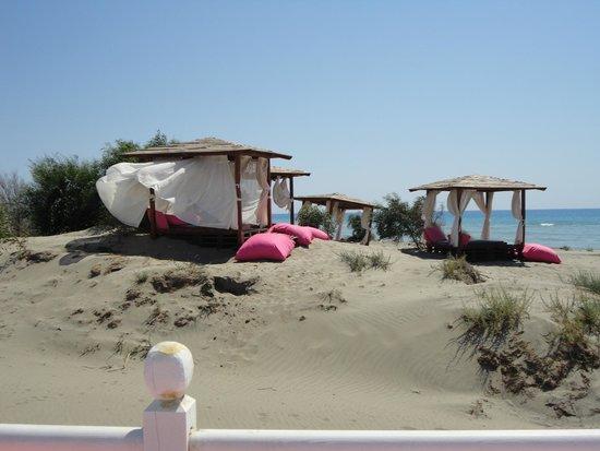 Pink Beach Club