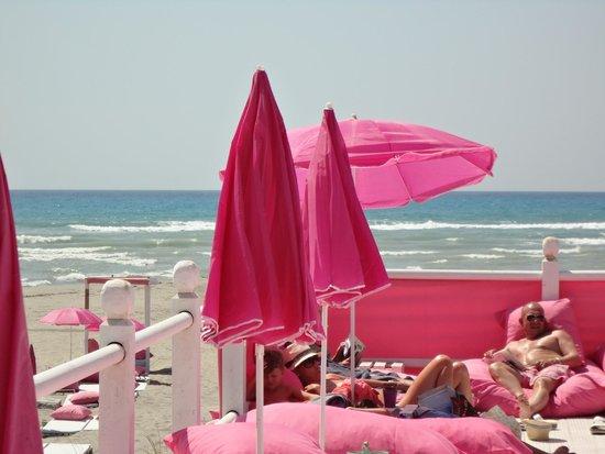 Pink Beach Club Rosaaa