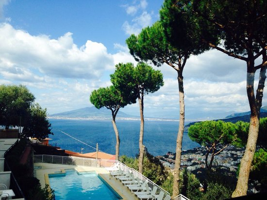 Hotel Villa Fiorita: Amazing view of Mt Vesuvius ��
