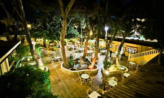 Hotel Baviera: Garten  -  Jardín