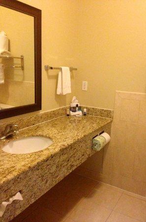 Best Western Sugarland Inn: Bathroom