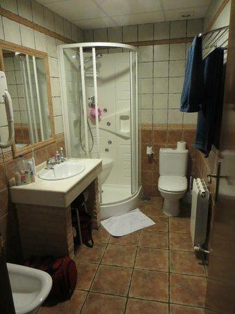 Hotel Medina de Toledo: The en-suite toilet/shower room