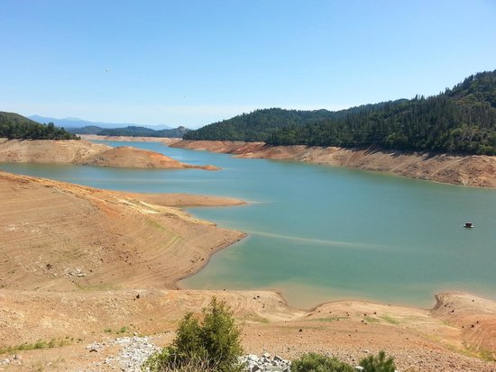Shasta Lake: Looking south of Turntable Bay