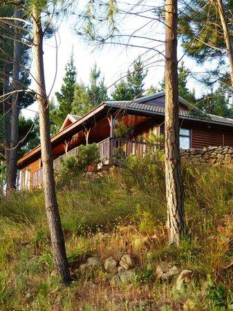 Lalapanzi Lodge: Phezulu Lodge