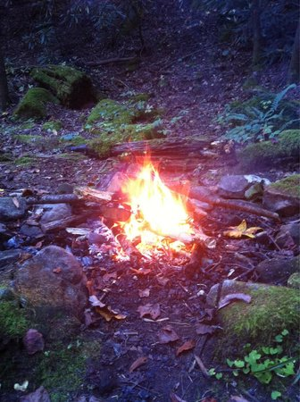 Garden of Eden Cabins: Fire ring by the Creekside picnic area.