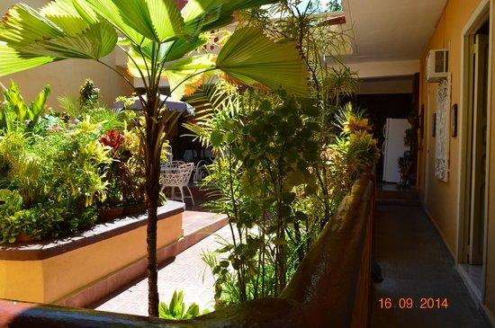 Hostal Nilda Y Luis: patio