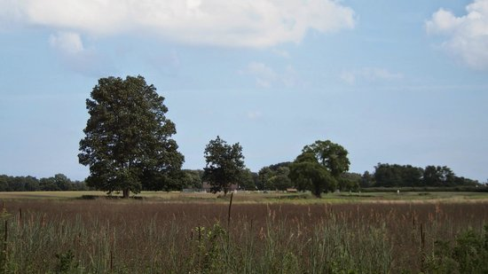 Colts Neck, NJ: Open space